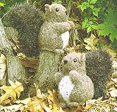 FIBER TRENDS Pattern - Nuts About Squirrels