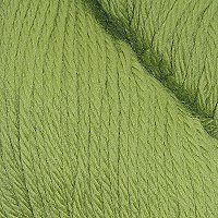 Cascade 220 Superwash - Moss 841 - 100 Gramm