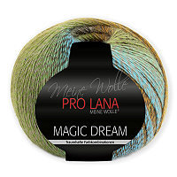 PRO LANA Magic Dream - No. 80 - 200gr.